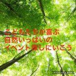 IMG_6199